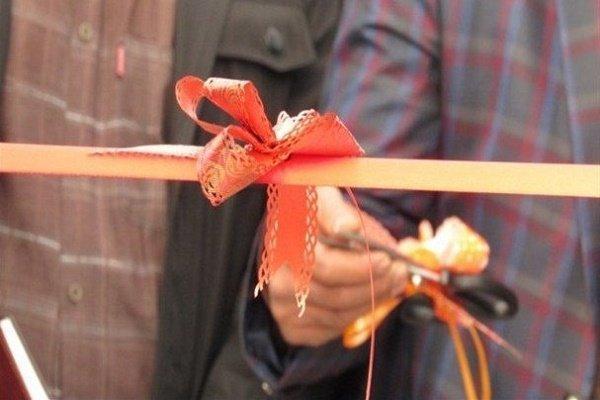 6 پروژه در شهرستان تنگستان به بهره برداری رسید